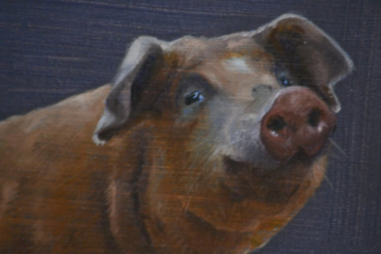 Pig- 21st Century Contemporary Animal Oil Painting of a Dutch Pig For Sale 1