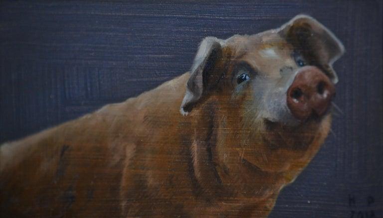 Hinke Posthuma Figurative Painting - Pig- 21st Century Contemporary Animal Oil Painting of a Dutch Pig