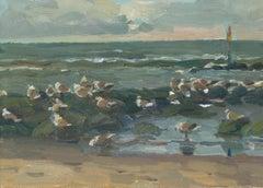 Seagulls on the Rocks, Hans Versfelt, 21st Century Contemporary Painting