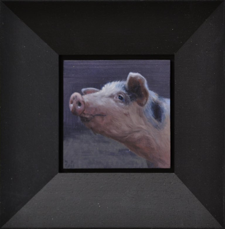 Small Pig's head- 21st Century Contemporary Animal Painting of a Pig For Sale 1