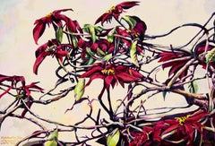 Poinsettia Tree, Claremont I- Contemporary painting, Oil on Canvas, 21st Century