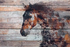 """Fire Horse Brown Rustic Fine Art Hand Embellished Giclee on Canvas 60 x 40"""""""