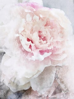 White Pink Peony Shabby Chic Hand Embellished Textured Giclee on Canvas