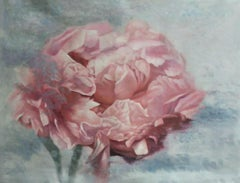 "Peony Shabby Pink Floral Art, 36 H X 48"" W Abstract Framed Floral Painting"