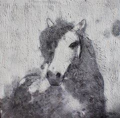 Silver Era Horse Farmhouse Horse Painting, Textured on Canvas 50 X 50""