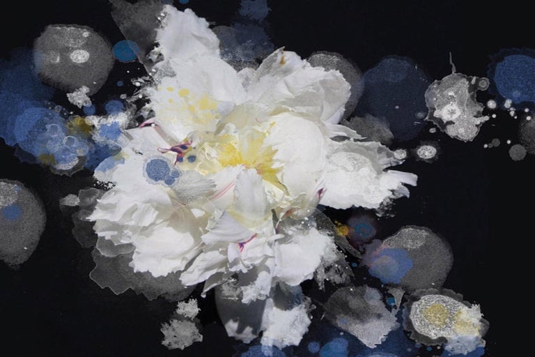 Blue Black White Floral Painting Hand Embellished Giclee on Canvas Breathless 3  - Mixed Media Art by Irena Orlov