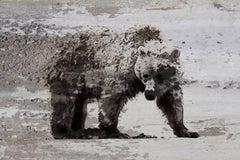 Bear Art, Bear Painting Fine Art Hand Embellished Giclee on Canvas