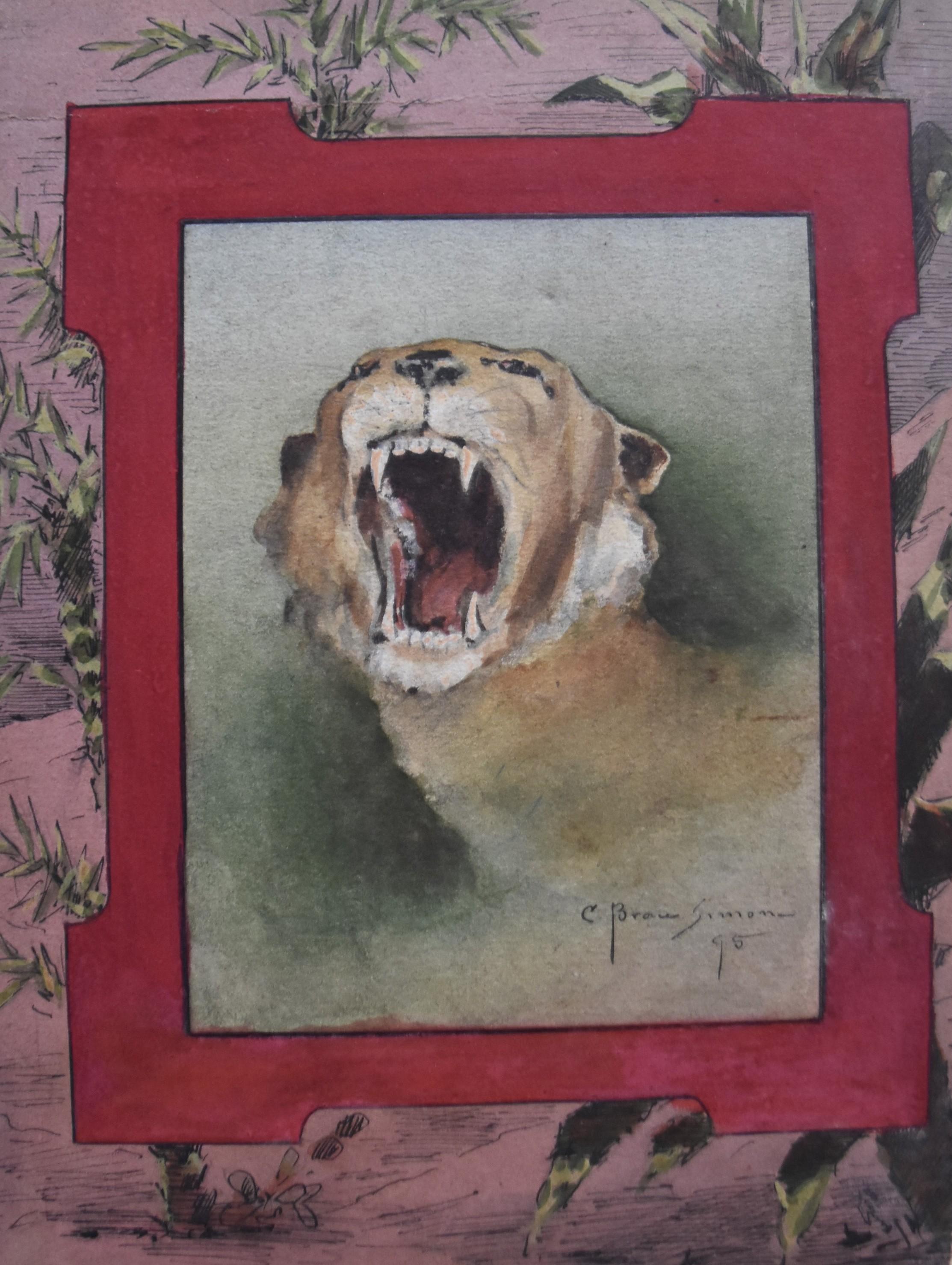 Casimir Brau-Simon, A roaring Cougar, 1895, watercolor