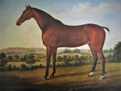 Horse in landscape, 18th century, circle George Stubbs, oil, old master