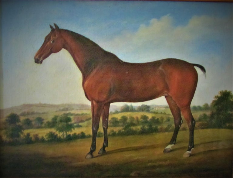 Horse in landscape, 18th century, circle George Stubbs, oil, old master - Brown Animal Painting by Circle of George Stubbs (1724-1806)