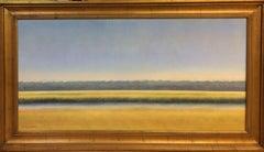 Summer Marsh,  original 24x48 abstract contemporary landscape