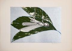 Insect - Animal Prints, Modern, Lithograph by Aldo Turchiaro, Green