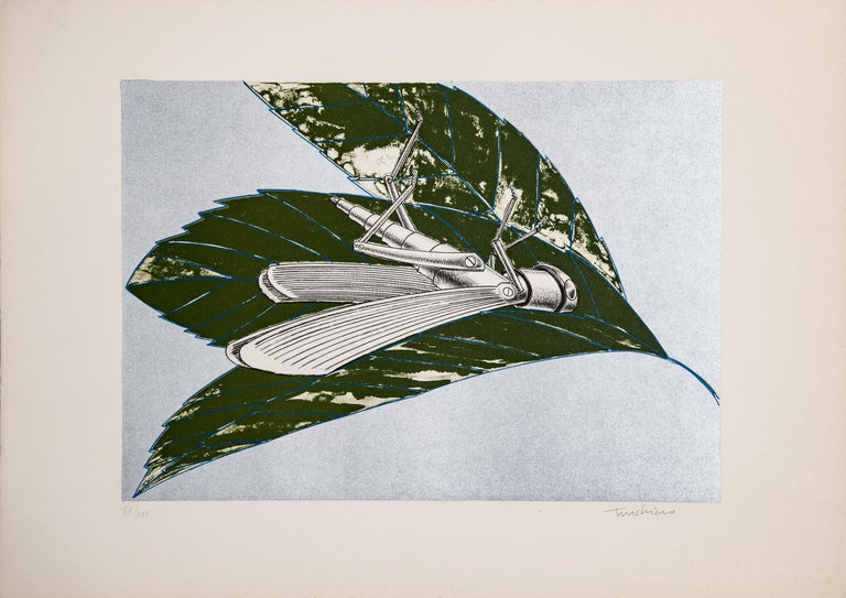"Lithograph of ""Insect"" by Aldo Turchiaro  Modern Figurative and Realistic art"