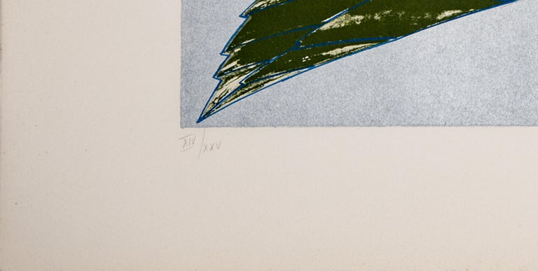 Aldo Turchiaro - Insect - Animal Prints, Modern, Lithograph, Green For Sale 2