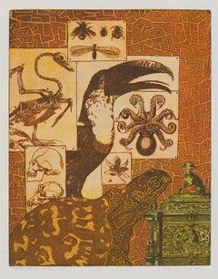 """Parrot Bird & Turtle"" - Interior of an Zoologist - Annemarie Petri"