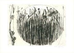 """Paola Pitzianti - """"Grass and flowers"""""""
