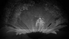 "Anna Golovanova - ""View III"" - Digital Photographic Art"