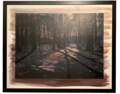 Forest in Purple - Wooden engraved panel - Etched and hand printed - Framed