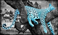 I ain't moving - Turquoise - Limited Edition 25 - Fine Art Print coated by epoxy