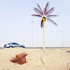 Durma - Fine Art Photography, Landscape, Palm, Contemporary, Art, Roger Grasas