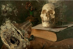 Skull II - Photography, Still Life, Baroque, Contemporary, Art, Aaron Alamo