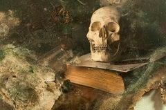 Skull III - Photography, Still Life, Baroque, Contemporary, Art, Aaron Alamo