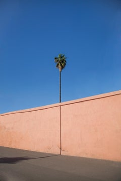 Palm - Fine Art Photography, Landscape, Contemporary, Art, Alfredo Rondón