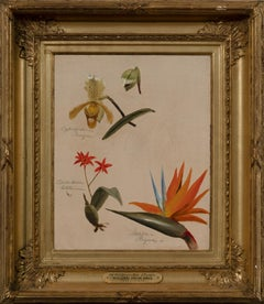 """Two Orchids and a Bird of Paradise"" William Jacob Hays, Western American Floral"