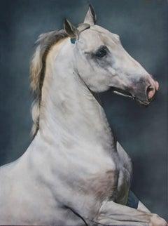 Equus: Carousel