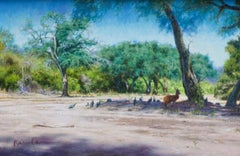Guinea Fowls in the Shade - Realist, Natural, Wildlife, South Africa