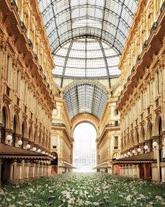 The Return of Nature Milan