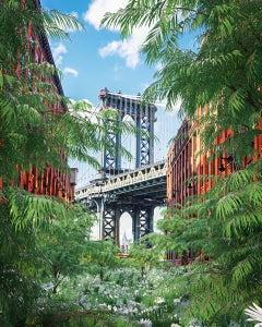 The Return of Nature New York