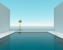 Pool Palm Tree