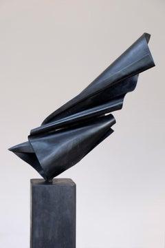 Uccello No. 1 by Francesco Moretti - black, copper sculpture