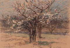Orchard in Blossom, Landscape by Walter Griffin (1876-1937, American)