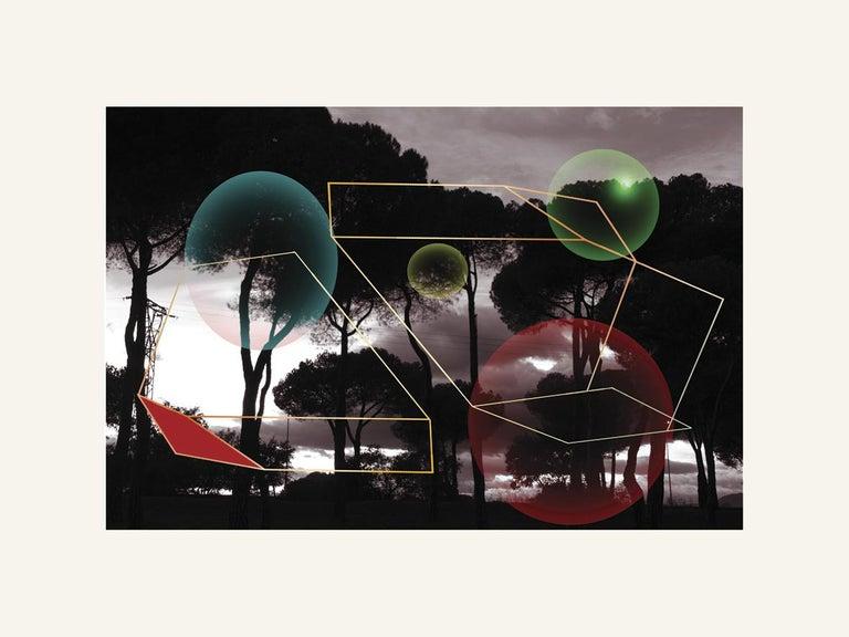 Francisco Nicolás Print - Forest 02 - Contemporary, Abstract, Minimalism, Modern, Surrealist, Landscape