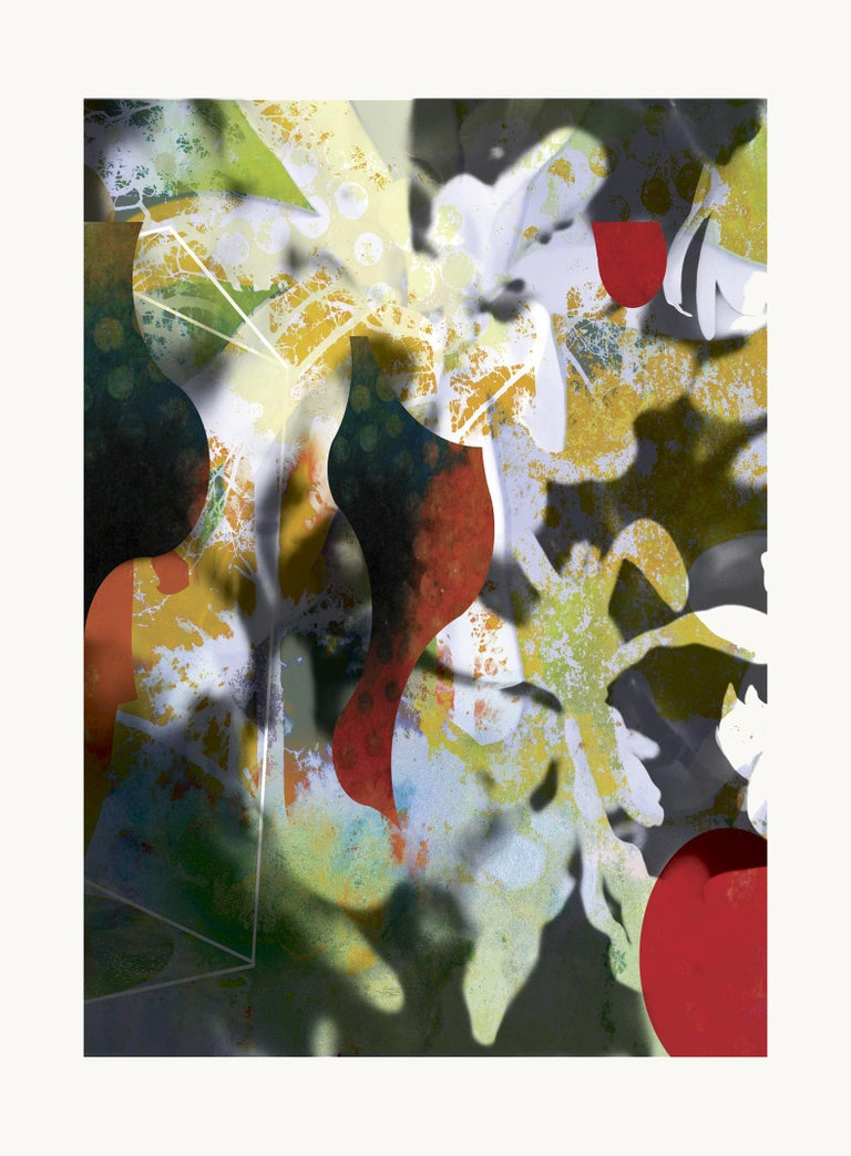 Flowers VI, 2019 Edition of 25  Digital pigment print Ultrachrome ink on Fabriano Rosaspina paper. Hand signed by the artist, and certificate of authenticity,  (Unframed)  His work has been shown in Reina Sofía Museum of Madrid, Royal Academy of