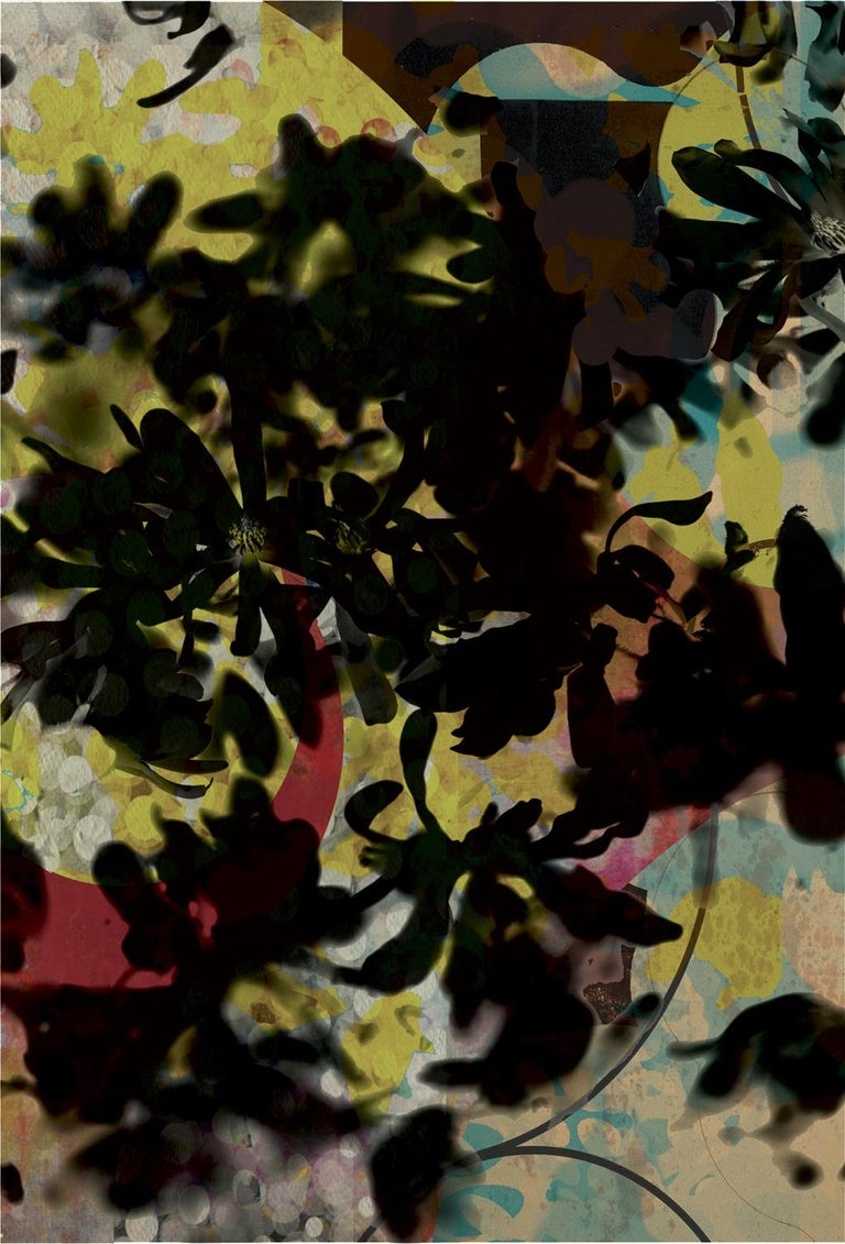 Flowers 026, 2019 Edition of 25  Digital pigment print Ultrachrome ink on Fabriano Rosaspina paper. Hand signed by the artist, and certificate of authenticity,  (Unframed)  His work has been shown in Reina Sofía Museum of Madrid, Royal Academy of