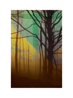 Forest XXII - Contemporary, Abstract, Modern, Pop art, Surrealist, Landscape