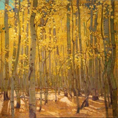 Sunlit Aspen Grove