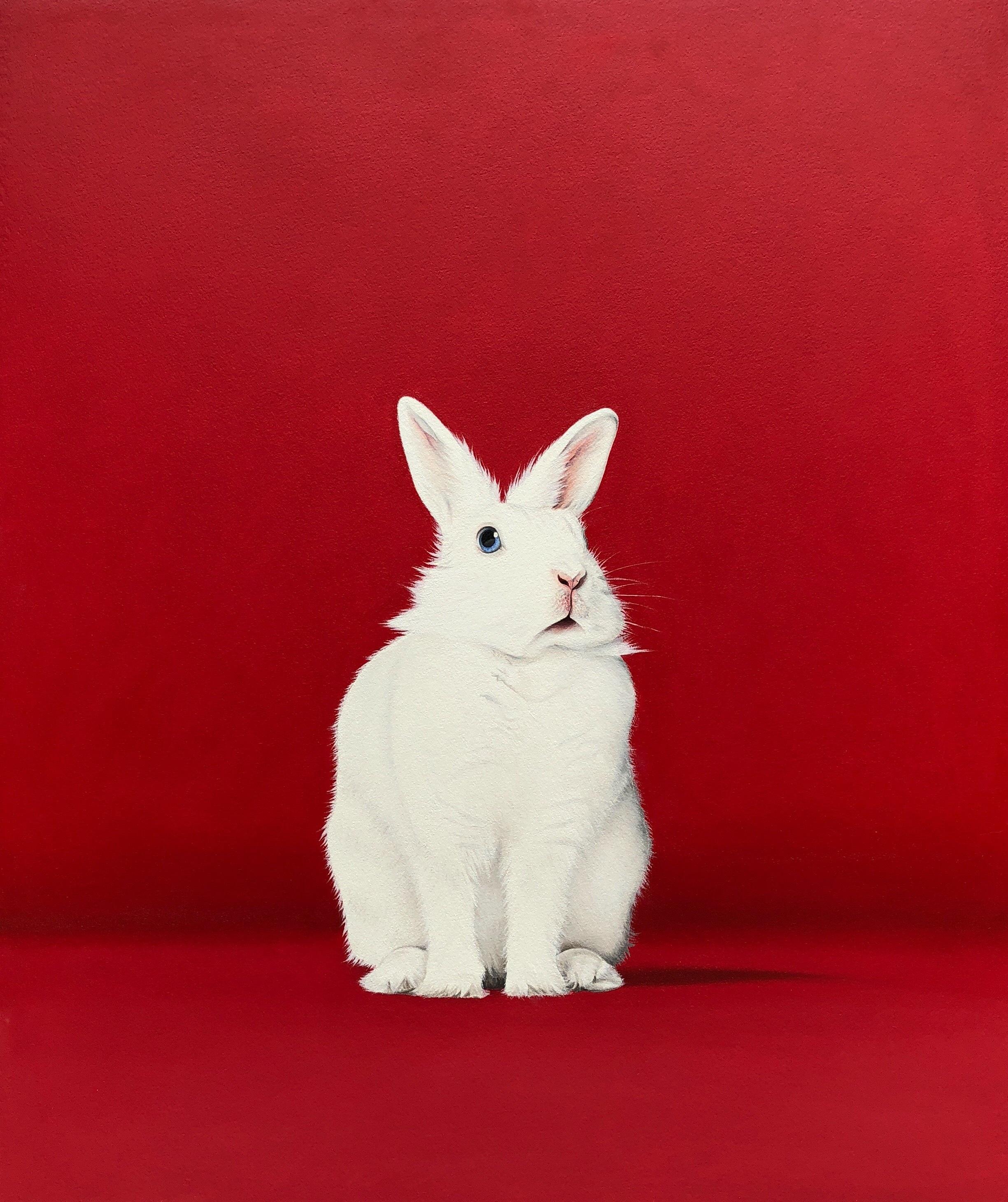 White Rabbit Red