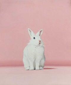 White Rabbit Pink