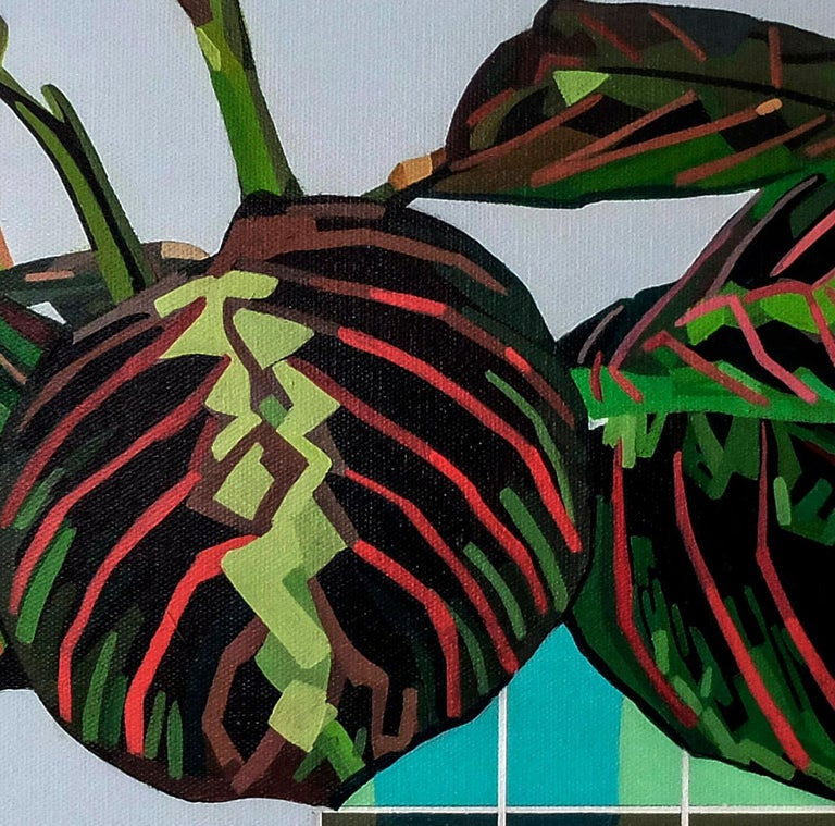 Maranta Tricolour - Contemporary Still Life Painting by Donald Maclean For Sale 2