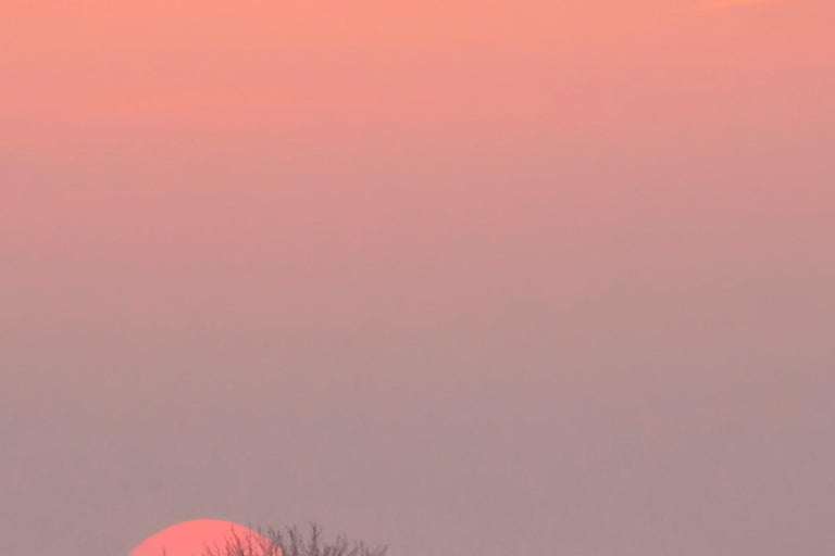 Photography Dibonod Travel Sunrise Nature Waterfront Dawn Pink Sky For Sale 2