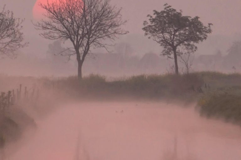 Photography Dibonod Travel Sunrise Nature Waterfront Dawn Pink Sky For Sale 5