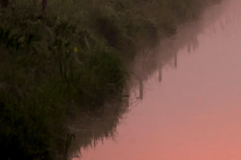 Photography Dibonod Travel Sunrise Nature Waterfront Dawn Pink Sky For Sale 7