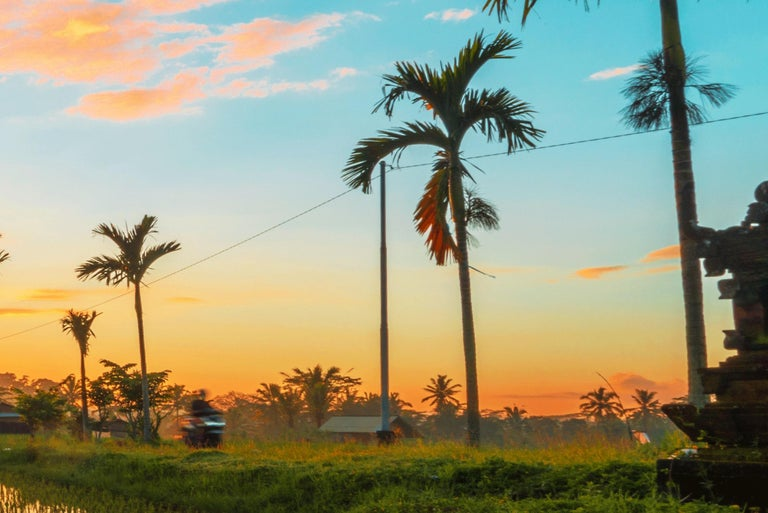 Bali, Asia - Photography Dibond Travel  Landscape Nature Ricefield Sunset Colour For Sale 6