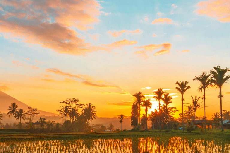 Bali, Asia - Photography Dibond Travel  Landscape Nature Ricefield Sunset Colour For Sale 5