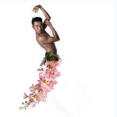 Figurative Photography Dibond Flowers Pink
