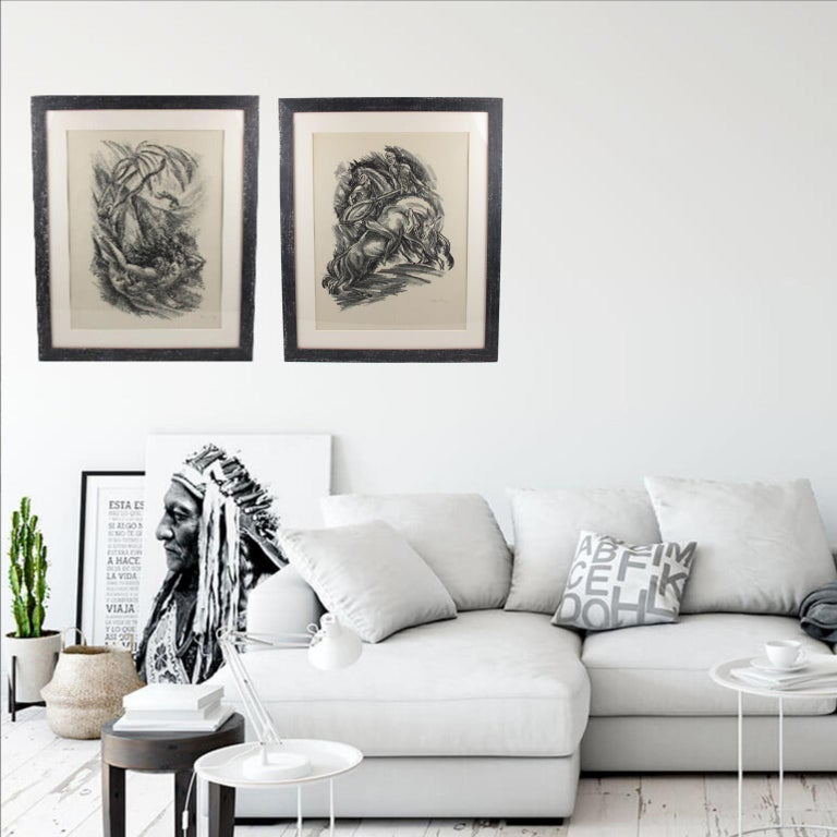 Tales of the Parrot Illustration Charcoal Drawing Lithograph Print For Sale 7